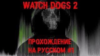 Watch Dogs 2 - Прохождение не Русском №1