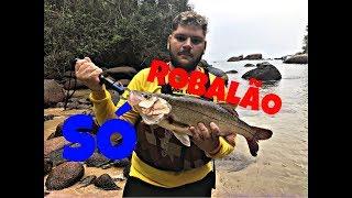 Video Robalo, cioba, pampo... Muito Peixe na ilha grande !!! #26 download MP3, 3GP, MP4, WEBM, AVI, FLV Desember 2017