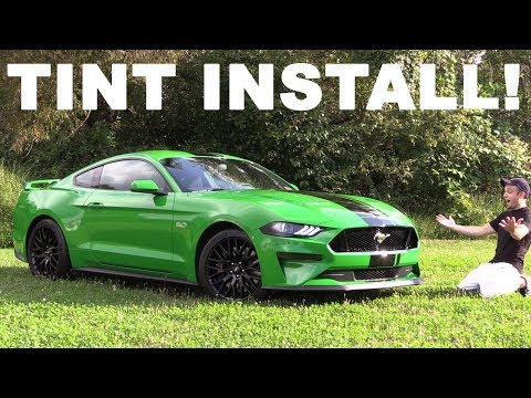 2019 Ford Mustang GT Light Tint…I ALMOST Had It!