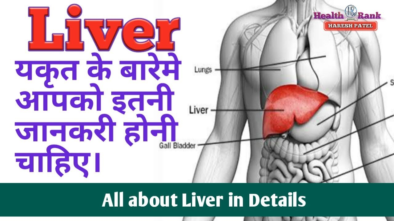 Liver Care Tips In Hindi All About Liver Function And Causes Of