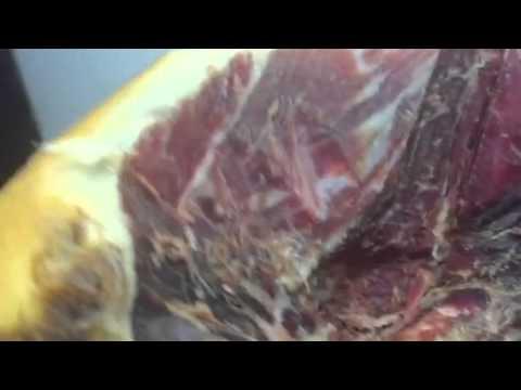 Gusano En Jamon Iberico 2 Youtube