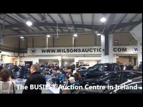 tuesday night car auction