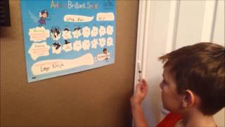 Add a Brilliant Smile Teeth Cleaning Reward Chart