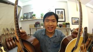 gtguitarshop guitar review yamaha f310 vs thuận guitar dt 02
