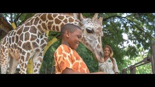 bmobile giraffe 2015 tv commercial