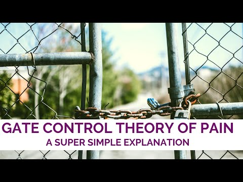 Gate Control Theory of Pain Explanation