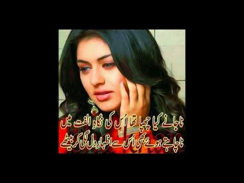 gohar Rajpoot sad song kinia shekaty lye dill aya bola utey new song 2017