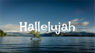 Hallelujah by Jeff Buckley COVER