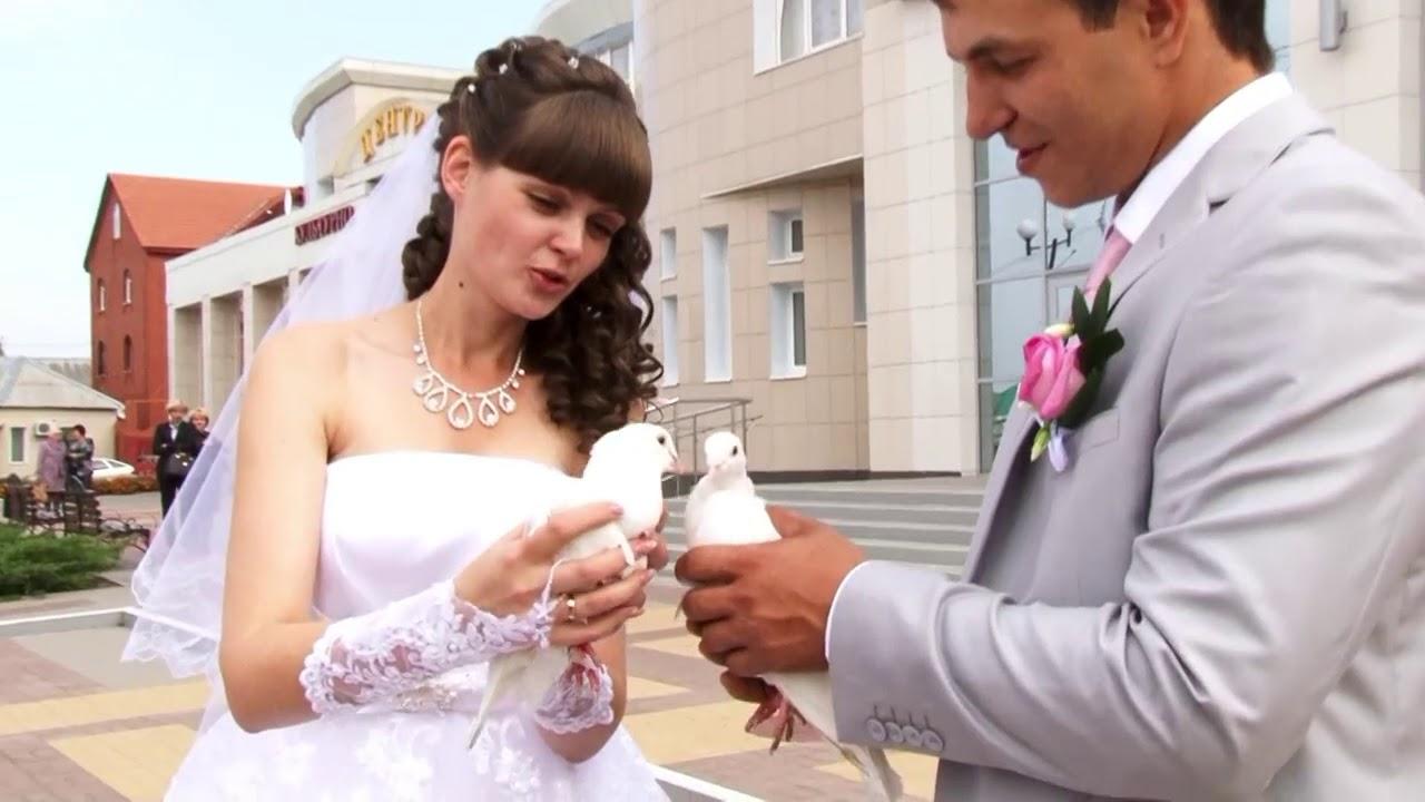 поздравление на свадьбу под песню бродяга мнение, что