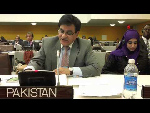 Minister (Press) Mian Jahangir Iqbal Speaking in the 4th Committee of the General Assembly.mov