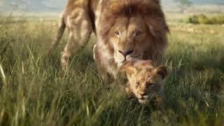 Disney's The Lion King | Zazu