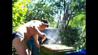 Как се отваря пчелен кошер - How to open a beehive