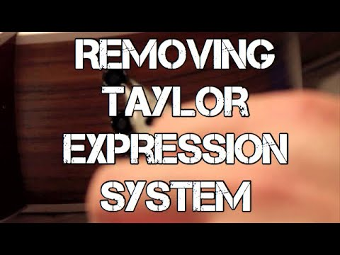 How to remove Taylor Expression System