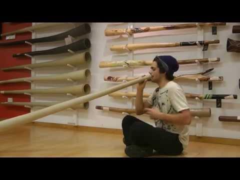 Italian Didgeridoo Player William @ Spirit Gallery