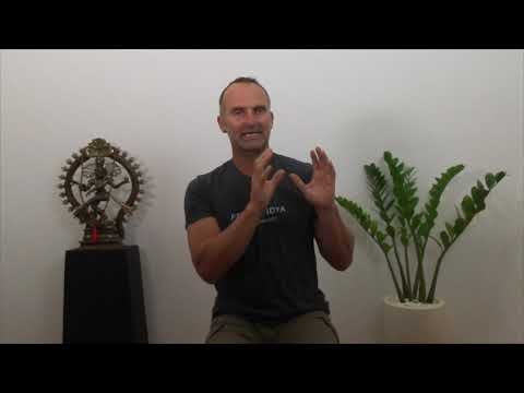 Brad Hay - 100 Hour Ayurvedic Yoga Specialist Training in Ba