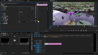 【Premiere Pro CC教學】11 視頻效果關鍵影格【201609】