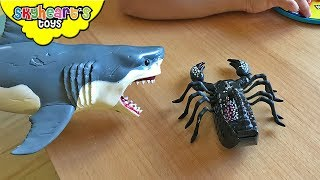 Our Pet Shark wants to play with SCORPION!! - Fluffy, Skyheart and scary scorpion toys for kids