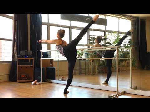 BEGINNER BALLET BARRE | for long lean muscles