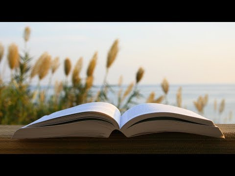 Study Music | Relaxing Music for Studying | Concentration Music | Reading Music | Instrumental Music