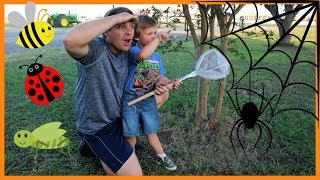Bugs for kids | Bugs and crawly things for children | Finding insects