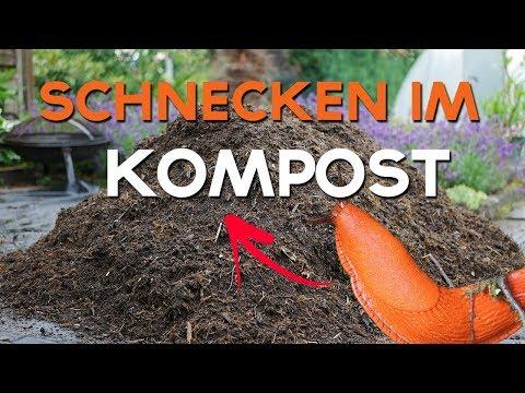 Pack es an! | Kompostplatz aufräumen | #packesan Challenge