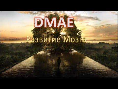 DMAE(ДМАЭ), Развитие Мозга!