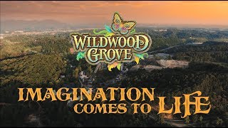 Wildwood Grove at Dollywood: Imagination Comes to Life | Documentary
