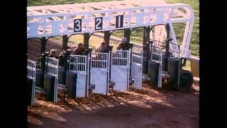 The Black Stallion (Theatrical Trailer)