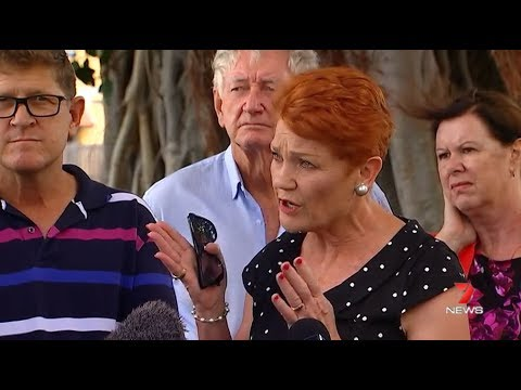 Pauline Hanson surprised by candidate for Thuringowa Mark Thornton's sex shop revelation