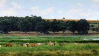 Halbinsel Mönchgut Geschichte und Landzungen