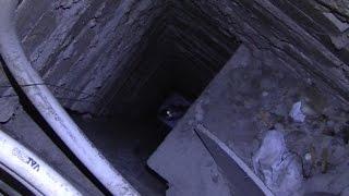 Кошка в шахте