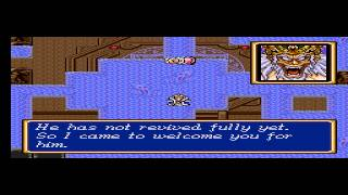 Shining Force II - Vizzed.com GamePlay Tower of the Ancients - User video