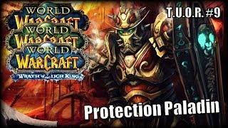 The Underdogs of Raiding #9 - Protection Paladin feat. Stepparn