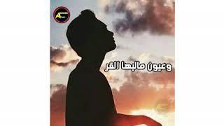حاله واتس محمد سلطان - استرها علينا يارب