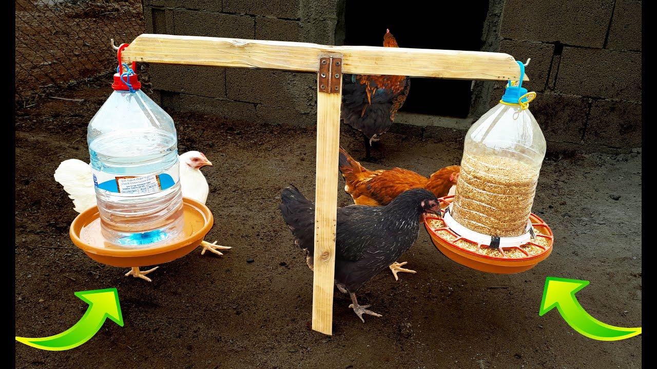 Hobi yumurta kafesi 2000tl tekerlekli