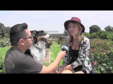 Webisode: Interview with Artist Hayley Marie Colston