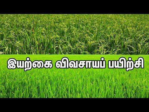 இயற்கை விவசாயப் பயிற்சி | Organic Agriculture Training