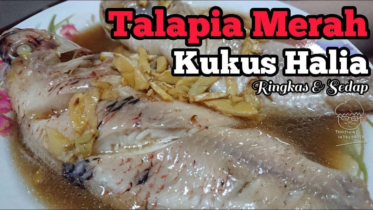 Talapia Merah Kukus Halia - Isteri tukang pegang kamera