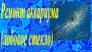 Ремонт аквариума (лобовое стекло)