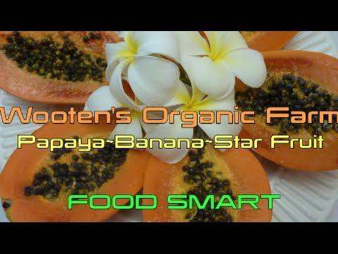 Wooten's Organic Farm ~ Papaya Banana Star Fruit