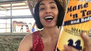Beauty Edu: Mane 'n Tail Shampoo Review - Yay or Neigh?