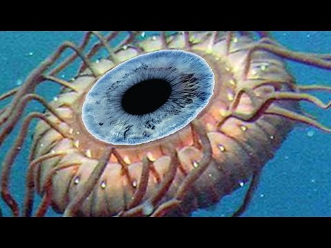 TOP 10 Scariest Creatures and Monsters in SUBNAUTICA