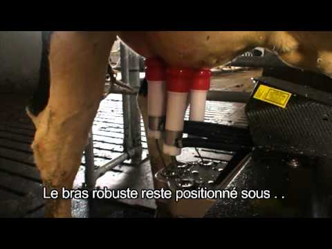 Lely Astronaut A4 - Product development (French)