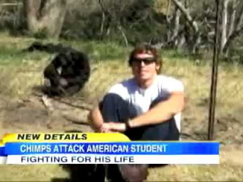 "Chimp Attacks Texas Graduate Student - ""caught on tape ..."