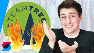Why #TeamTrees could do more harm than good