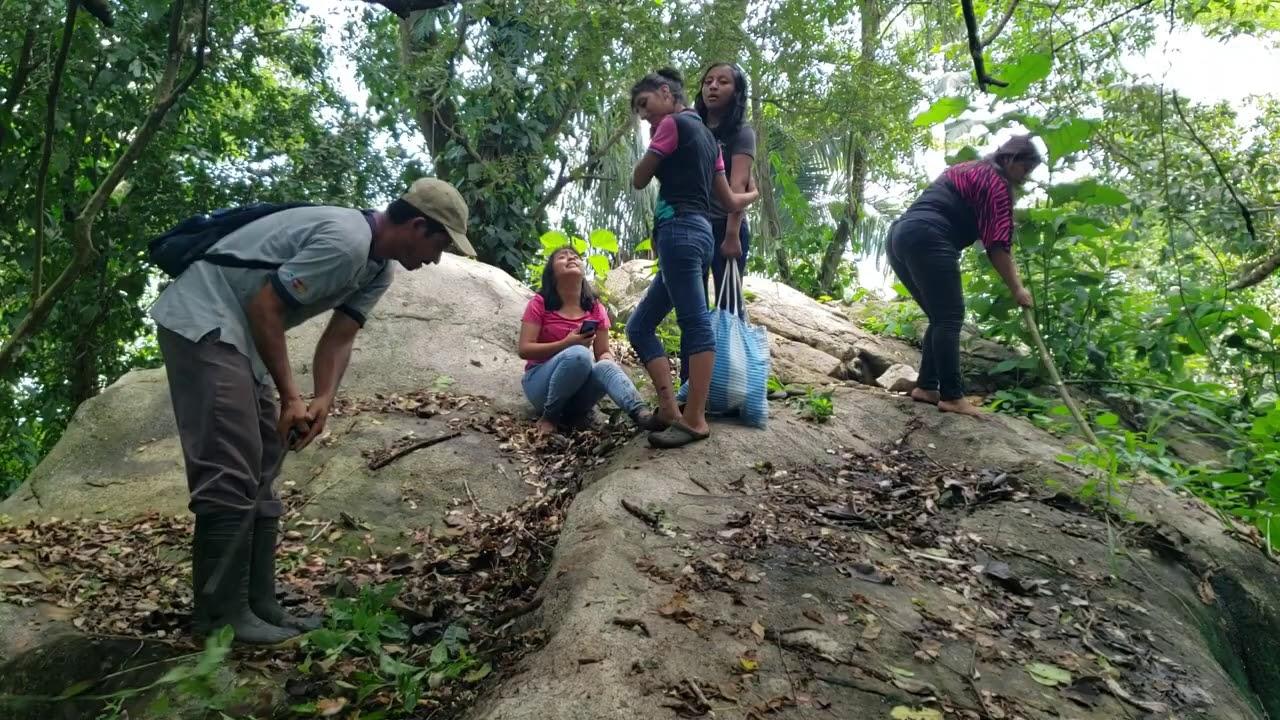 En Busca de Hojas De Tamal Pero Mira que nos Encontramos Una enorme piedra encantada 😱😱