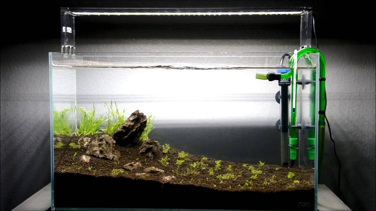 aqua design amano ada 60 p project new micro swords youtube. Black Bedroom Furniture Sets. Home Design Ideas