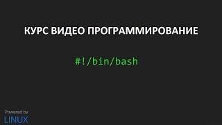 Создание скриптов bash урок #3