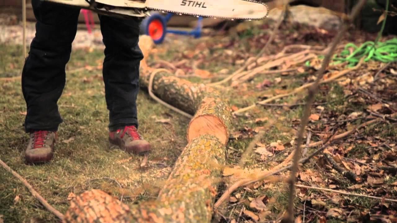 Toronto Backyard Tree Removal   Cohen & Master - YouTube