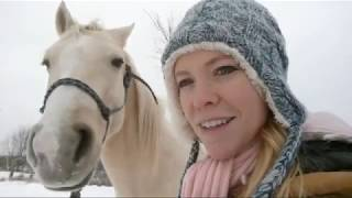 Cold And Snowy Horse Training Live